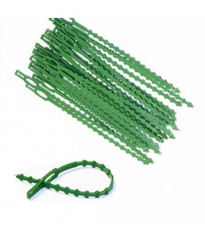 Lot de 30 attaches ajustables pour branches 17cm